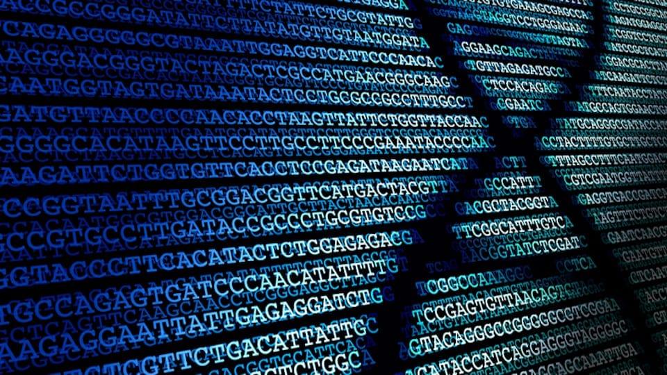 DNS-teszt